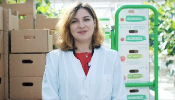 Russian greenhouse project Agro-Invest captured on video