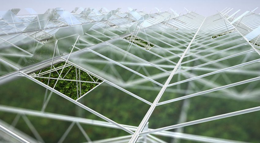 Bom Group introduces Winterlight Greenhouse concept: 10% more light