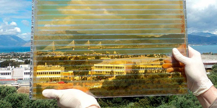 Brite Solar Glass generates electricity for greenhouses