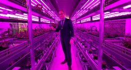 Vertical farming is definitely the future, the only question is where and when