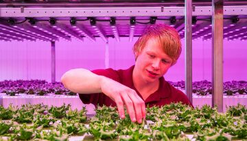 Vertical Farming is growing worldwide, especially outside the Netherlands
