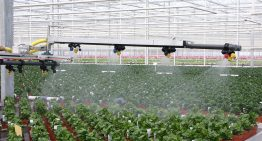 Optimal application of crop protection products depends on crop, pest and area
