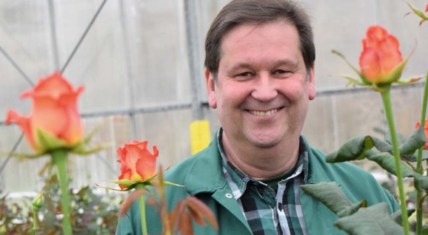 German rose grower chooses market development over expansion
