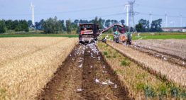 Dutch agricultural industry smallest ecological footprint in the world
