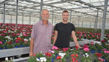 New sales concepts give German pot plant growers strong market foothold