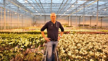 OK Plant opts for triple screen to boost quality even further