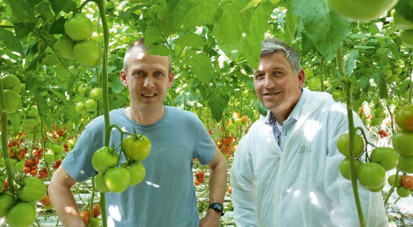 First grower sheds more light on anti-condensation coating