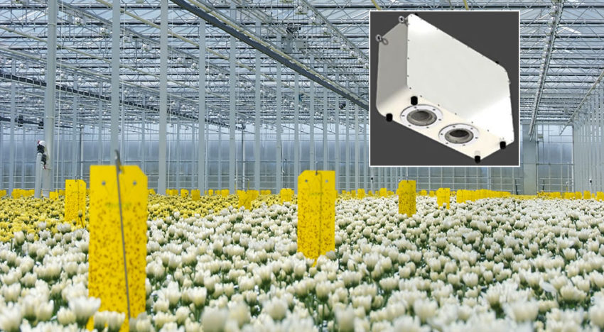 CropObserver offers growers more insight into a plant's growth process