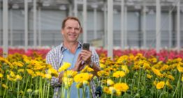 Digital tool for servicing and maintenance in horticulture