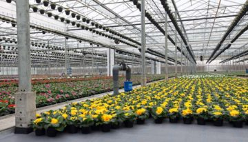 Cultivation fabric with good water permeability and temperature distribution