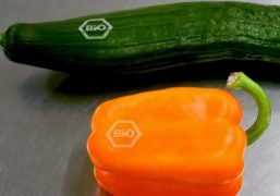 Cucumber and bell pepper with laser brand